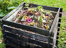 Kompost zum Düngen