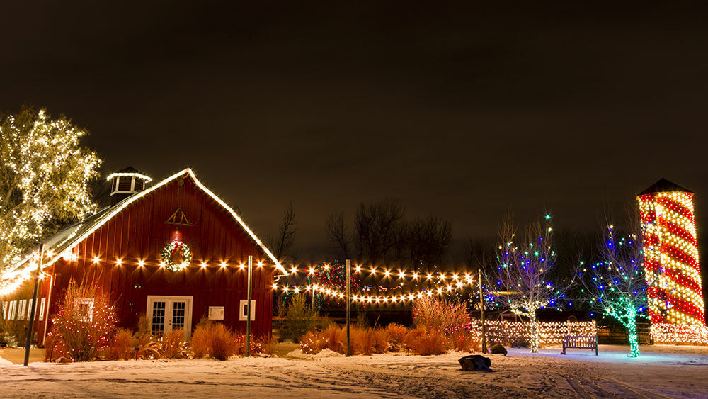 Weihnachtsbeleuchtung Kaufen.Weihnachtsbeleuchtung Online Kaufen