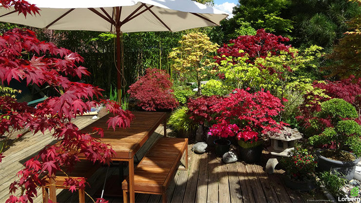 Tipps zur Gartenplanung von der Baumschule Lorberg