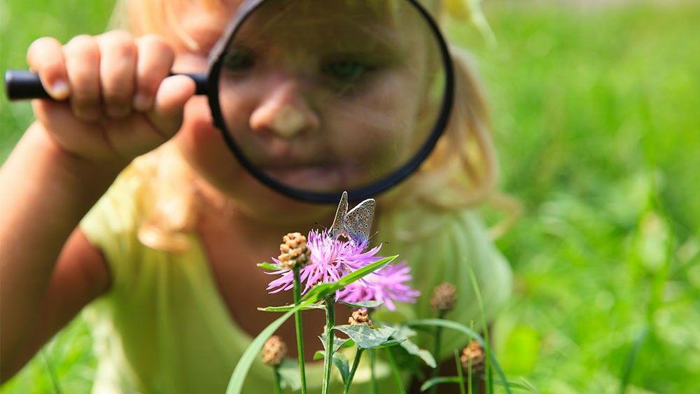 Neugieriges Kind im Garten