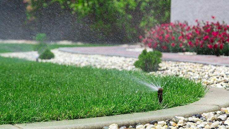 Englischen Rasen bewässern