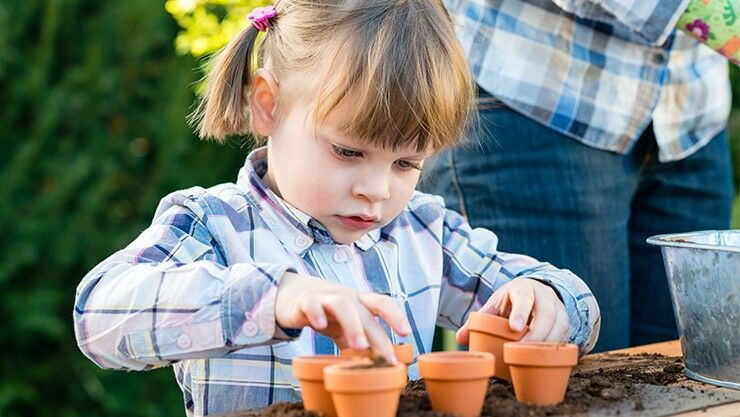 Blumenzwiebeln pflanzen ist kinderleicht