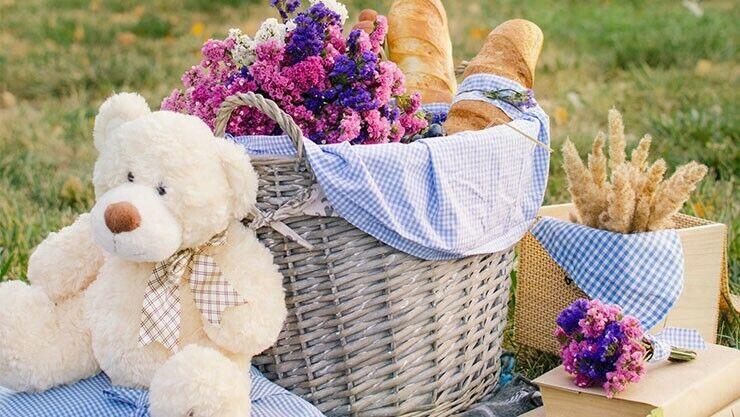 Am 10.07. ist Teddy-Bär-Picknick-Tag