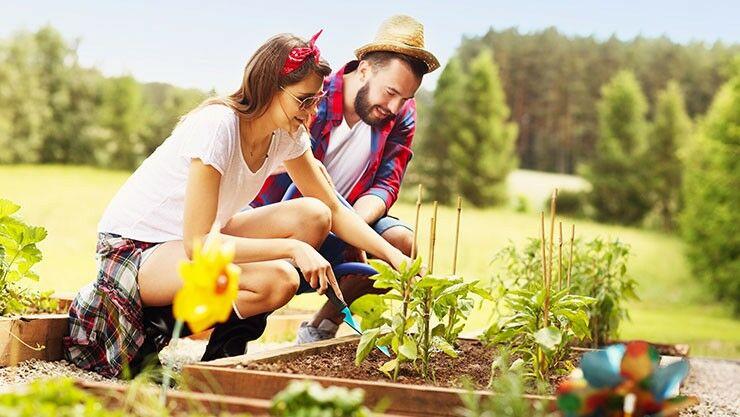 Valentinstagsgeschenkideen für Gemüseliebhaber