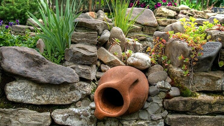 Interessante Pflanzen Für Den Steingarten