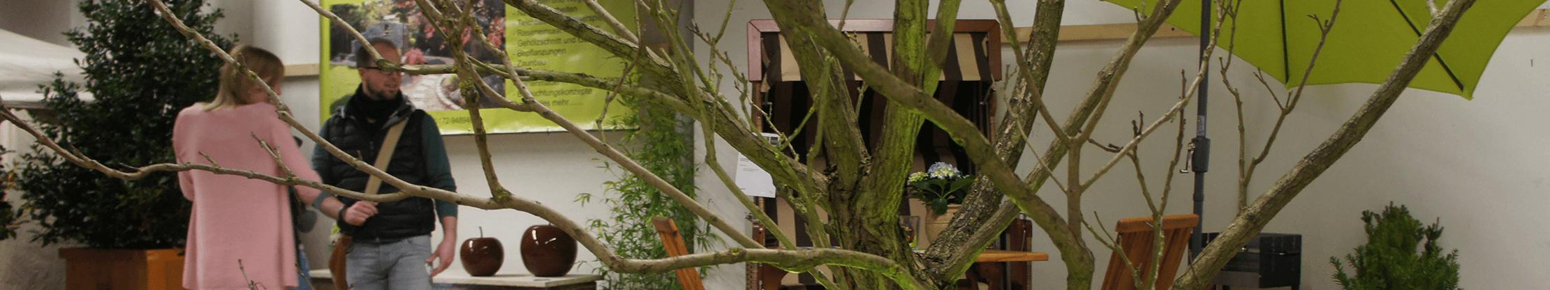 Gartenträume Lingen