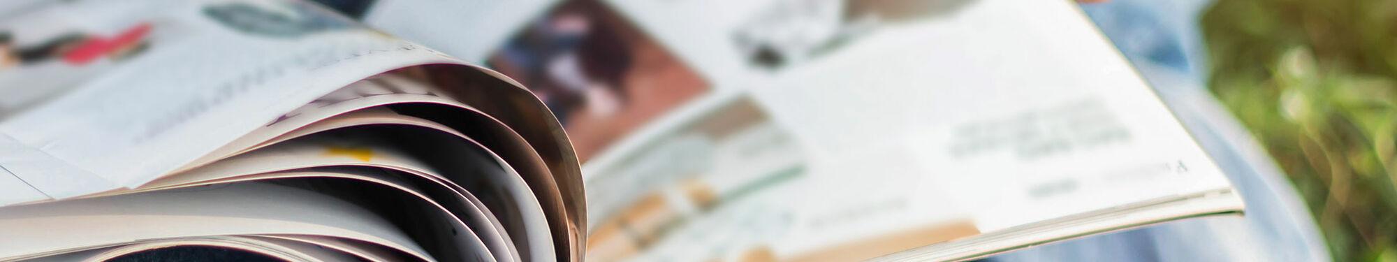 gartenflora ausgabe 10 2018 in der presse webshop. Black Bedroom Furniture Sets. Home Design Ideas