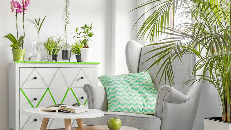 Wohnzimmer und Pflanzen